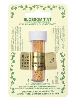 Blossom Tint - Apricot
