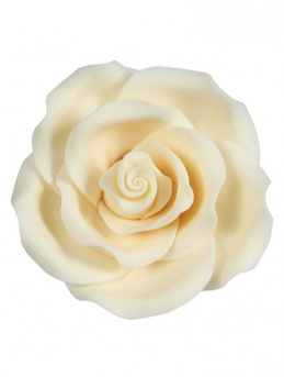 Extra Large Soft Sugar Roses - Ivory 63mm - Box of 8