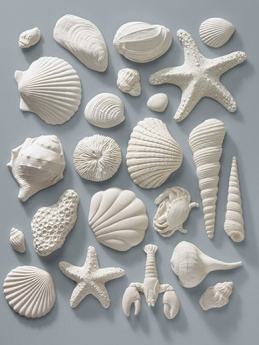 Gumpaste Sea Shell Assortment - Pack of 23