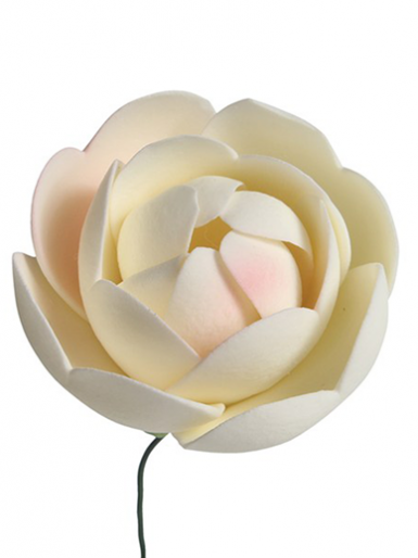 Gumpaste - 25 x Ranunculus Flowers - Medium 40mm