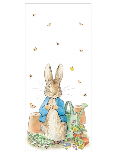 Peter Rabbit Cello Treat Bags - Pack of 20